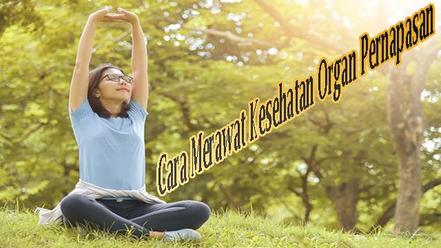 Kesehatan Organ Pernapasan